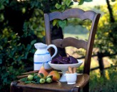 provencal-pears