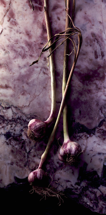 purple-garlic