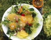 citrus-salad